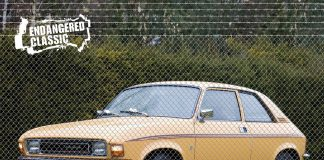 Endangered Cars